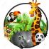 Jungle (3)