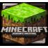 Minecraft (8)
