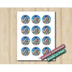 Paw Patrol Stickers 2in