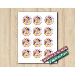 Disney Princesses Stickers 2in